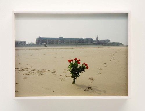 gallery 2012