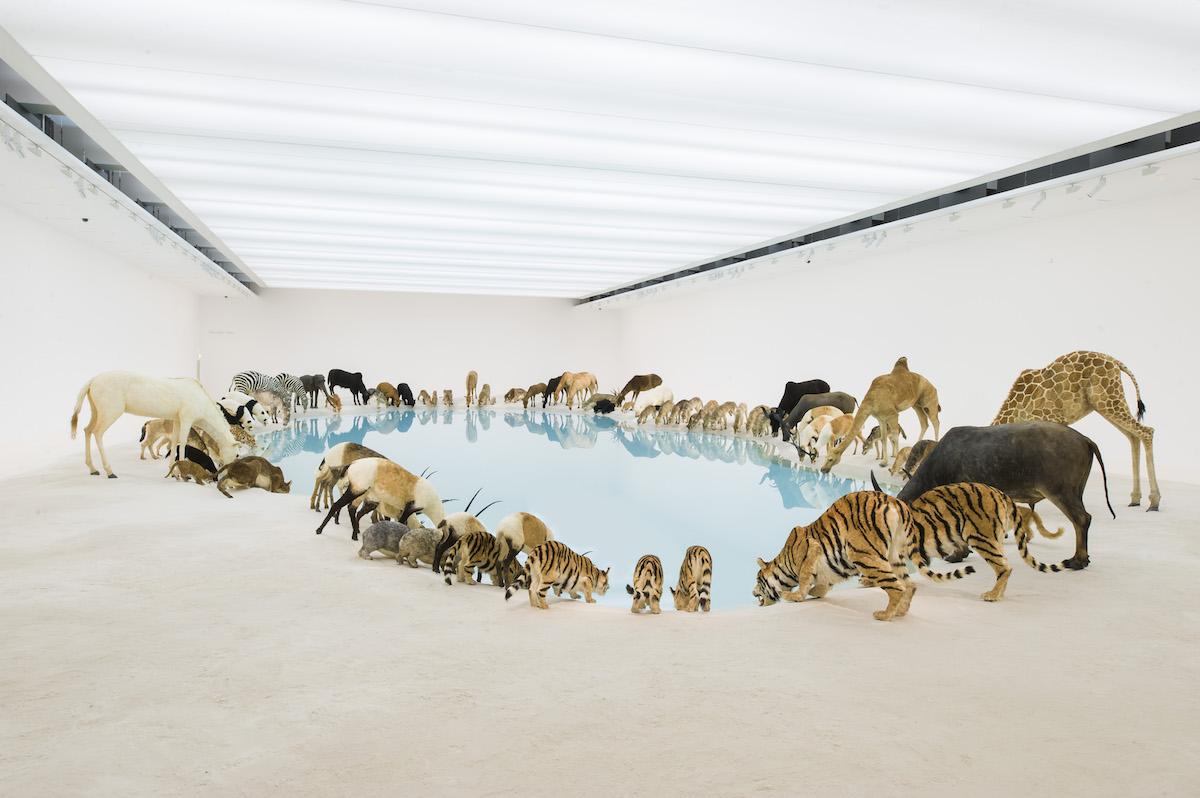 Cai Guo-Qiang, Wateringhole (2013)