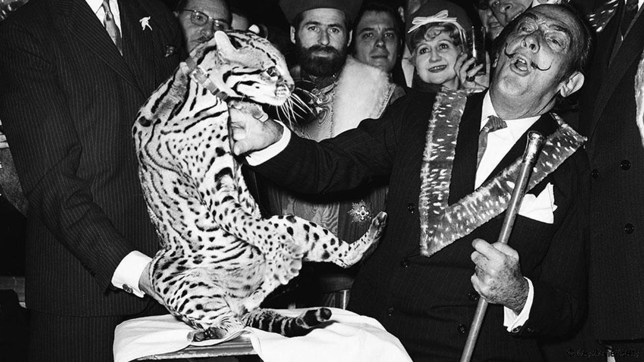Salvador Dalí en zijn ocelot, Parijs 1967. Credit: Keystone/Getty