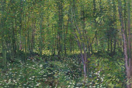 Van Gogh, Rousseau, Corot: In het bos