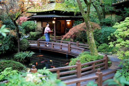 Tips Tokyo | 9 culturele en culinaire hotspots