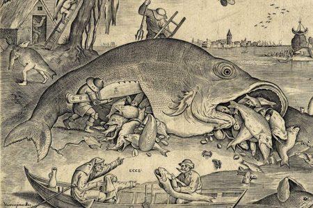 BEET! | Vissen naar verborgen betekenissen