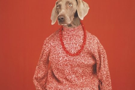 William Wegman - Being Human