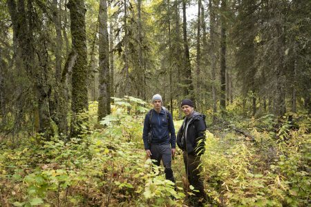 Jeroen Toirkens & Jelle Brandt Corstius: Borealis - Life in the Woods